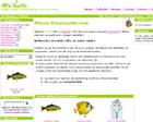 New Vulto (online winkel)